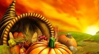 We would like to wish our Kitchener families a happy and safe Thanksgiving! We hope you have a restful long weekend with friends and family